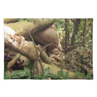 Giant Tree Roots Trip to Zanzibar Island Reefs Fun Cloth Placemat