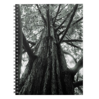 Giant Tree Spiral Notebook