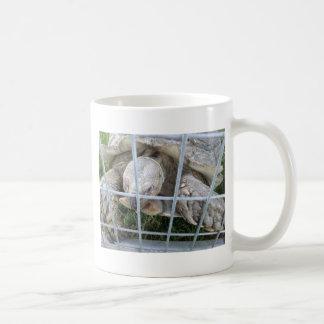 Giant Turtle Classic White Coffee Mug