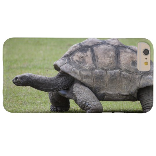 Giant turtle in grass blackberry case