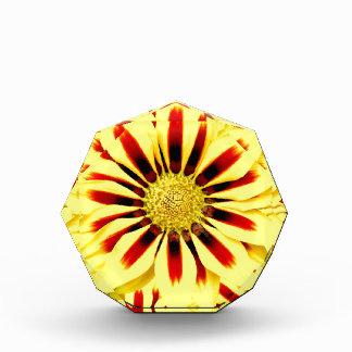 Giant Yellow Red Flower Image Design Award