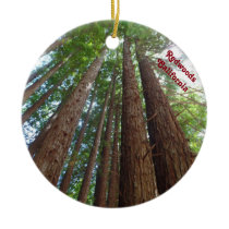 Giantic Redwood Trees National Forest California Ceramic Ornament