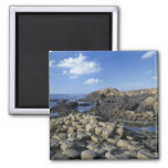 Giants Causeway, County Antrim, Northern 2 Inch Square Magnet