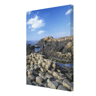 Giants Causeway, County Antrim, Northern Canvas Print