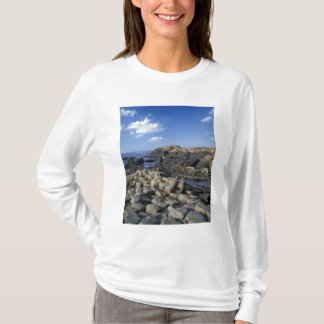 Giants Causeway, County Antrim, Northern T-Shirt
