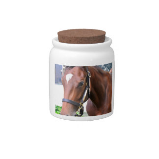 Giant's Causeway's Filly Candy Jar