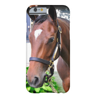 Giant's Causeway's Filly Barely There iPhone 6 Case