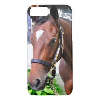 Giant's Causeway's Filly iPhone 7 Case