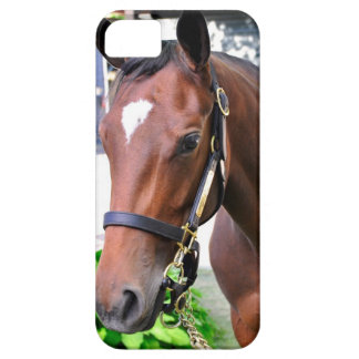 Giant's Causeway's Filly iPhone SE/5/5s Case