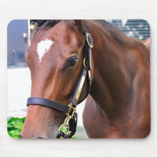 Giant's Causeway's Filly Mousepads
