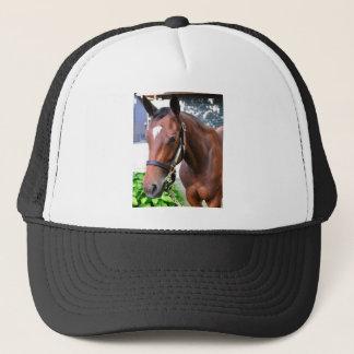 Giant's Causeway's Filly Trucker Hat