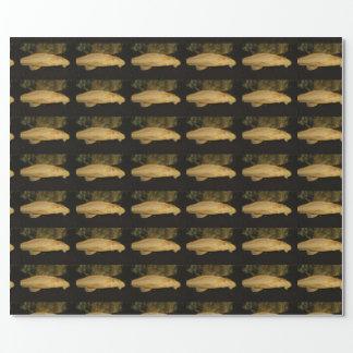 Gibbiceps de Glyptoperichthys Papel De Regalo