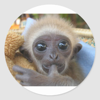 Gibbon Baby Stickers