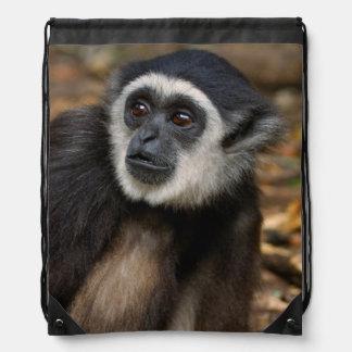 Gibbon Blanco-Dado (lar) del Hylobates, Monkeyland Mochila