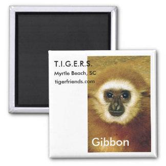 Gibbon Magnet - T.I.G.E.R.S. Myrtle Beach, SC