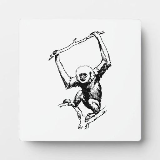 Gibbon Placas De Plastico