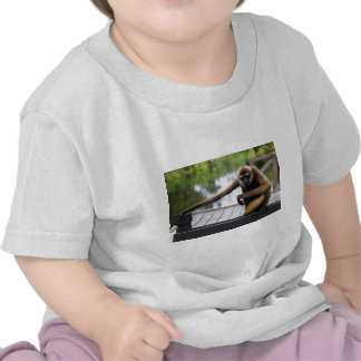 Gibbon Camisetas