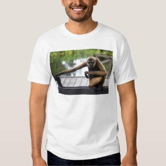 Gibbon T Shirt