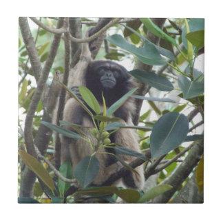 Gibbon Tile