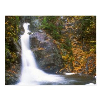 Gibbs Falls Presidential Range Postcard