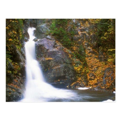 Gibbs Falls Presidential Range Postcards