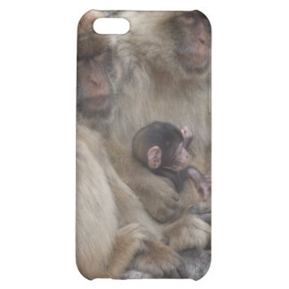 Gibraltar Apes - iPhone4 Case iPhone 5C Covers