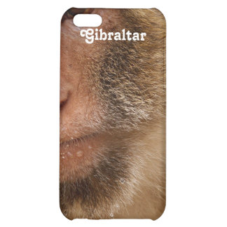 Gibraltar Barbary Macaques iPhone 5C Cover