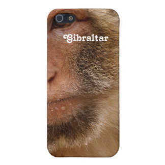 Gibraltar Barbary Macaques iPhone 5 Case