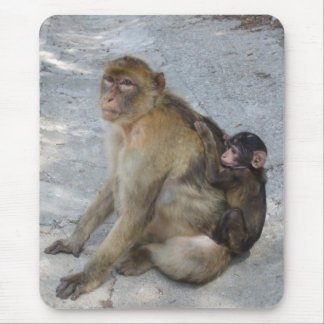 Gibraltar Monkeys mousepad
