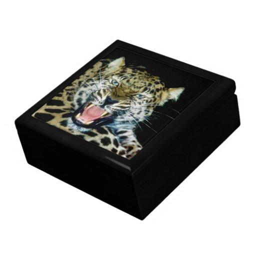 Gift box - amur leopard