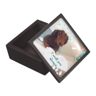 gift box with picture of a dog
