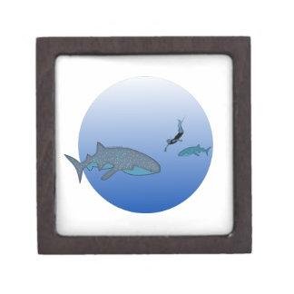 Gift Box with Whaleshark