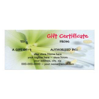 Gift Certificate Flower Rack Card             ...