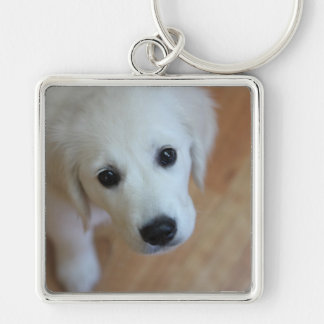 Gift for animal lovers keychain