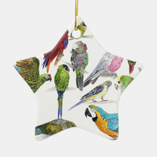 Gift for Parrot lovers everywhere Ceramic Ornament