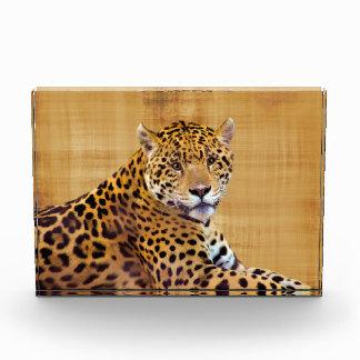 #Gift grande manchado del Gato-amante de Jaguar