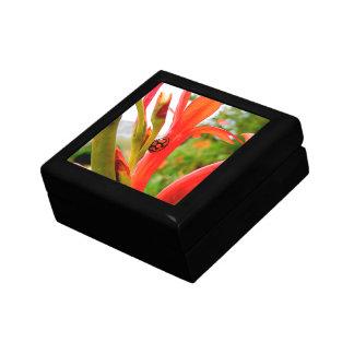 Gift keepsake box red flower and ladybug