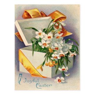 Gift Present Daffodil Jonquil Postcard