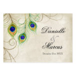 Gift Registry Cards - Peacock Feathers Wedding Set Business Card