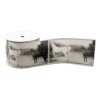 Gift ribbon, vintage, horse, equestrian grosgrain ribbon