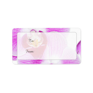 Gift Tags - Radiant Orchid Closeup Photo