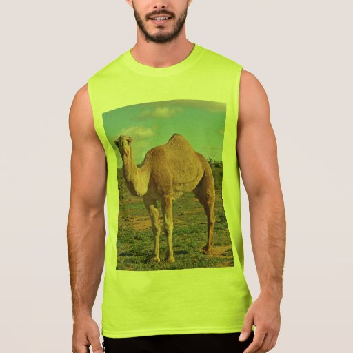 Gifts for All Sleeveless T-shirt