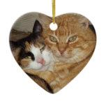 Gifts Gatos Adornments