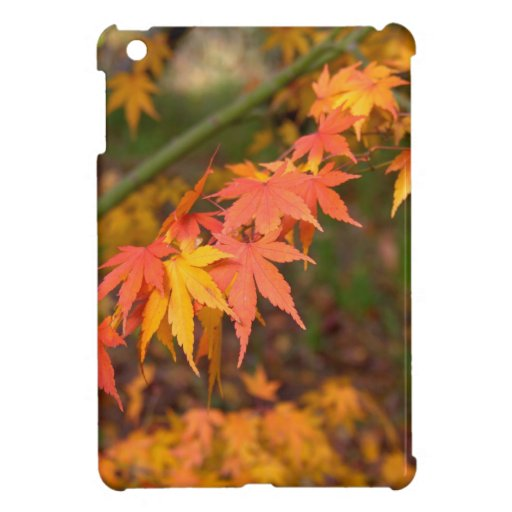 Gifts In Fall Colors Multiple Products iPad Mini Covers