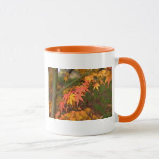 Gifts In Fall Colors Multiple Products Mug