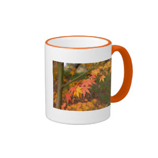 Gifts In Fall Colors Multiple Products Ringer Coffee Mug