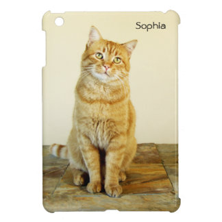 Giinger Tabby Cat iPad Mini Case