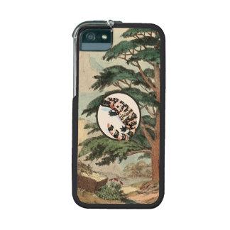 Gila Monster In Natural Habitat Illustration Case For iPhone 5/5S