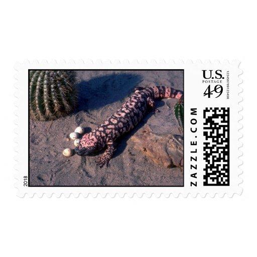 Gila Monster Lizard eating Desert Quail eggs Stamp