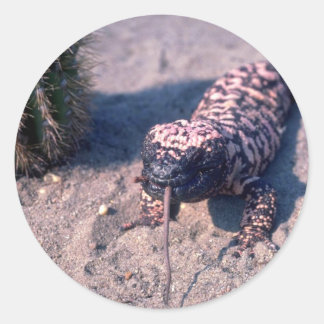 Gila Monster Lizard eating mouse Round Sticker